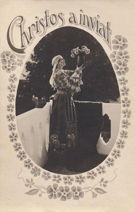 regina maria_pasti